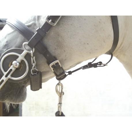 Gullet safety strap