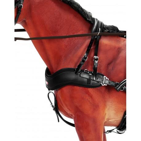 Bricole anatomique pour cheval (set complet)